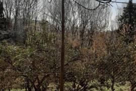 Land For Sale, Gvara
