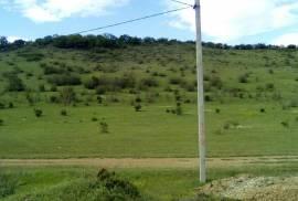 Продается Земля, Tsodoreti