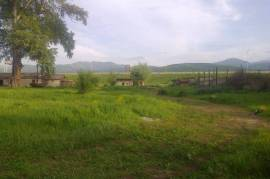 Land For Sale, Gomi