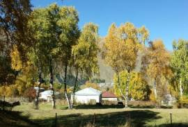 Land For Sale, Sioni