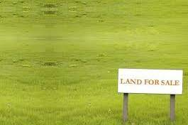 Land For Sale, Tserovani