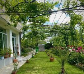 House For Rent, Giorgitsminda