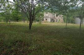 House For Sale, Chinti