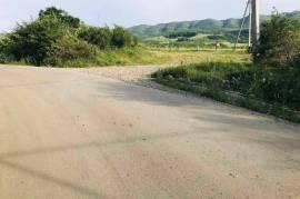 Land For Sale, Saguramo