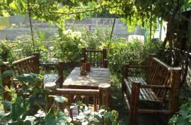 Daily Rent, Borjomi