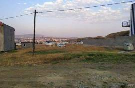 Land For Sale, Didi digomi
