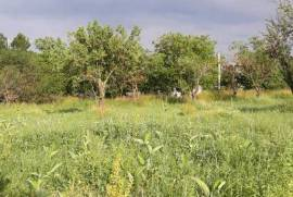 Land For Sale, Orbeti
