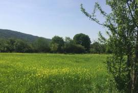 Land For Sale, Aragvispiri