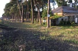 Land For Sale, Ureki