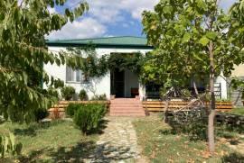 House For Rent, Saguramo