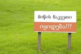Land For Sale, Tsinamdzghvriantkari