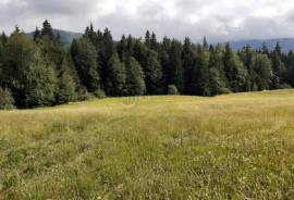 Land For Sale, Bakuriani